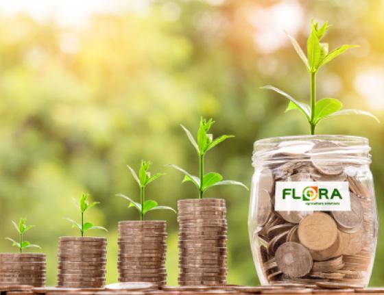 Flora - Послуги та сервіси - Зображення - 3